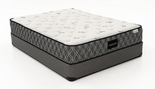 Aireloom Air Chamber Secret To Greatest Mattress Planet